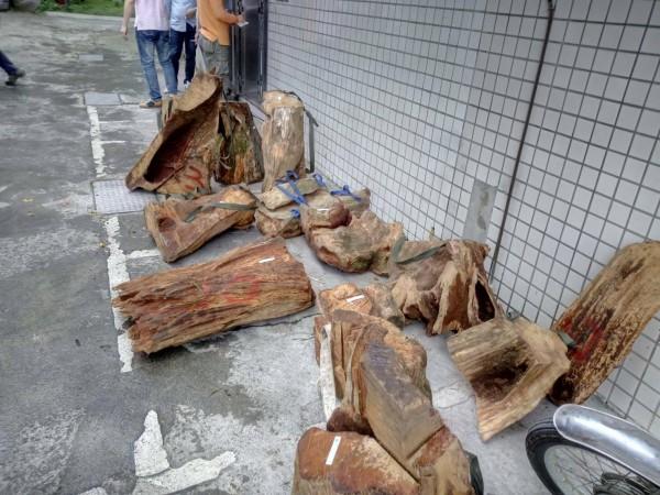 新竹縣橫山警分局查獲2名山老鼠集團成員,並起出市價約40萬元、重達495公斤的14大塊肖楠木。(圖由警方提供)