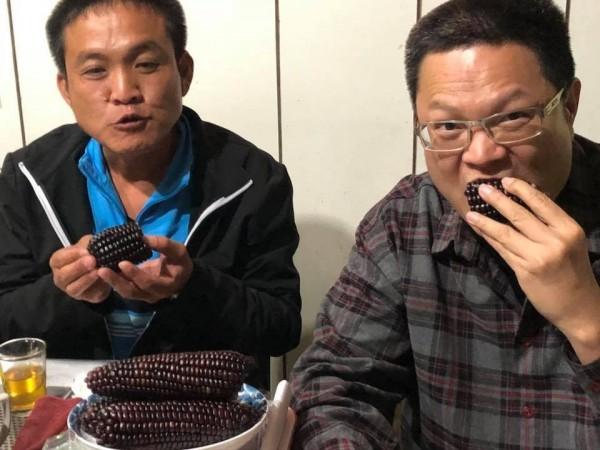 富含花青素的新品種玉米,吃完嘴唇都黑了。(戴光宗提供)