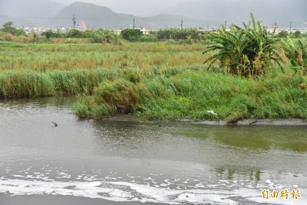 宜蘭縣利澤工業區一條污水管線被民眾發現口吐白沫,環保局檢測後確定為陰離子界面活性劑造成,初步檢驗並未超標,其他項目則送交實驗室進一步化驗。(記者張議晨攝)