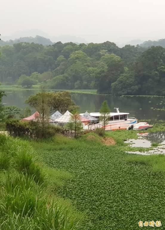 夏天到了,新竹縣峨眉湖的布袋蓮狂長,環湖遊艇也被布袋蓮包圍。(記者蔡孟尚攝)