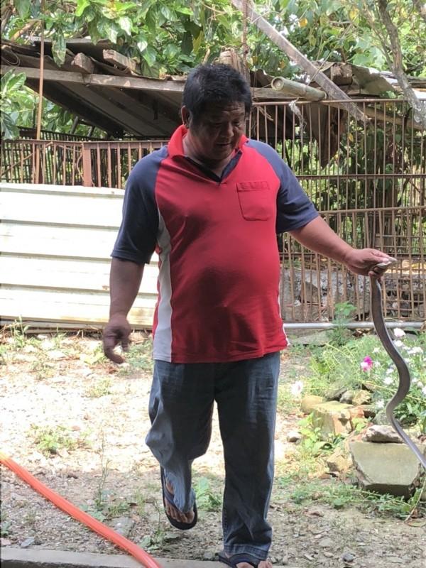 消防隊員逮捕大眼鏡蛇。(圖由縣議員戴光宗提供)