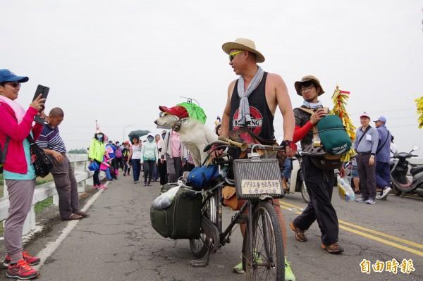 台中市民蕭宇翔騎著腳踏車載著愛犬「老二」上路,信徒爭相合照,成為大甲媽遶境隊伍的焦點。(記者曾迺強攝)
