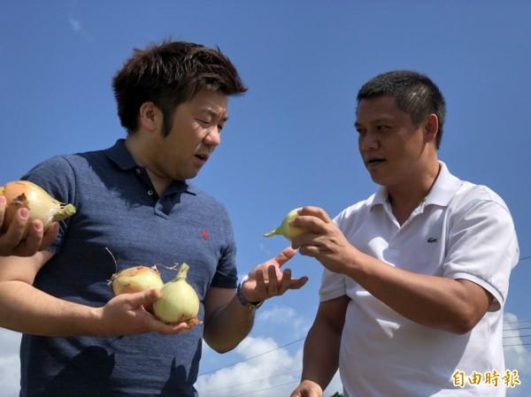 日籍顧問山口祐輔(左)在張齊嘉(右)介紹下,在洋蔥田和集貨場實際測試品嚐。(記者蔡宗憲攝)