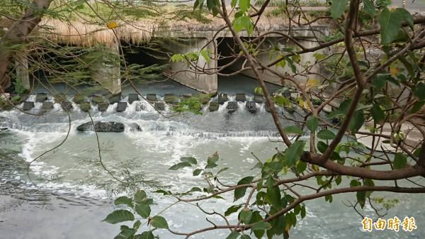 竹溪現為市區污水排水道,但水文歷史豐富,未來淨化水質重塑河畔綠廊景觀。(記者洪瑞琴攝)