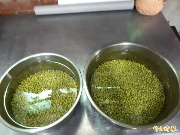 夏川拉麵的綠豆芽是以阿嬤的古法養成,要先浸泡1天,再放進大茶壺內,每隔4小時加水,4天後就是口感甜脆的綠豆芽。(記者洪美秀攝)