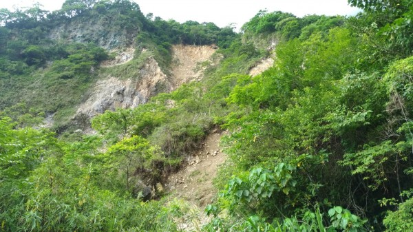 花蓮市佐昌步道上方山區因震後崩塌,大面積黃土碎石裸露在翠綠植披間的景象,一度令當地居民憂心忡忡。(記者王峻祺翻攝)