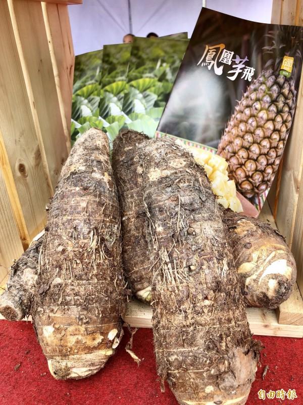 屏東縣的高樹芋頭。(記者羅欣貞攝)