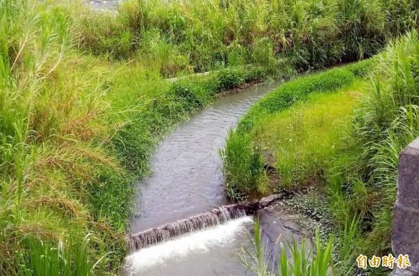 南投縣竹山鎮社寮河川公地缺水問題,將在既有的灌溉渠道中,進行上、下游兩端水路闢建工作。(記者謝介裕攝)