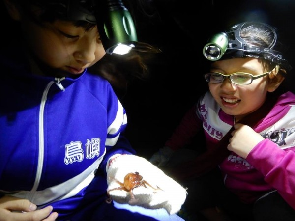 鳥嶼國小透過夜照,認識章魚生態。(圖由鳥嶼國小提供)