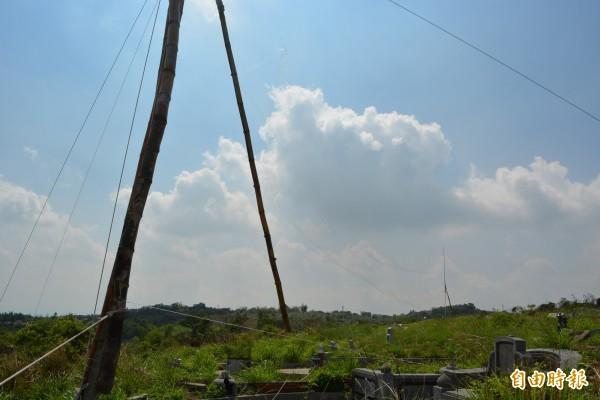 彰化市八卦山第二公墓稜線遭違法架設超大型鳥網,長度達300公尺。(記者湯世名攝)