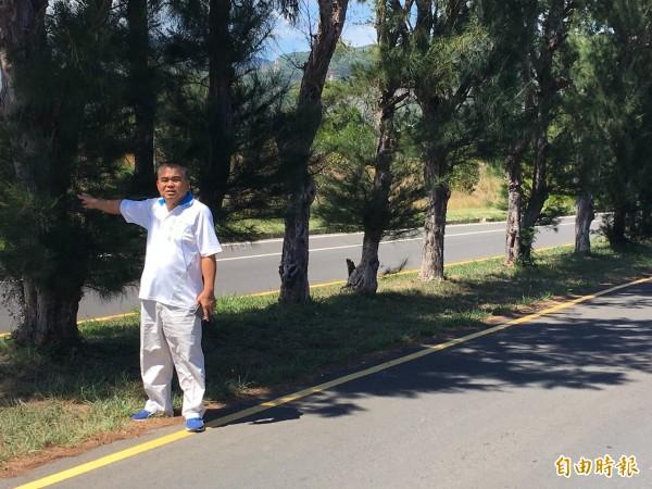 恆春鎮代盧榮士建議,南光路的木麻黃應移到兩側路旁。(記者蔡宗憲攝)