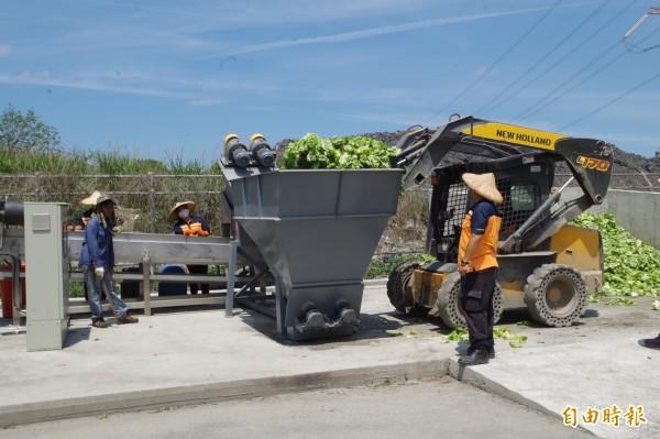 二崙清潔隊工作人員將蔬菜生廚餘倒入脫水設備。(記者林國賢攝)