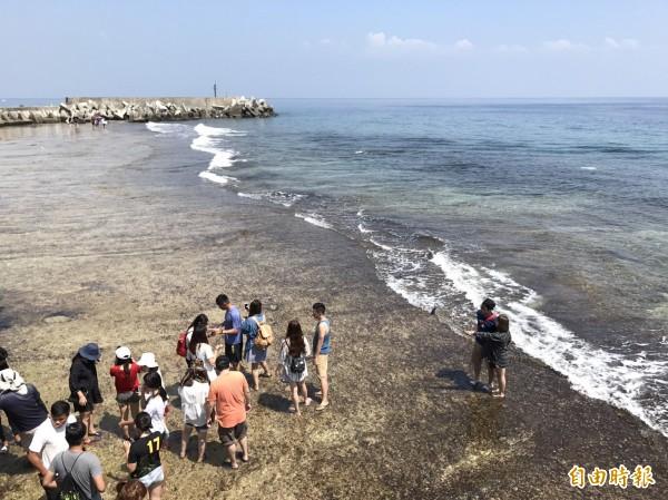 小琉球5個潮間帶設立「自然人文生態景觀區」。(記者陳彥廷攝)