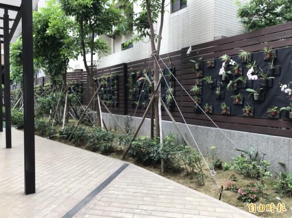 植森園社區的綠牆面綠意盎然。(記者蔡彰盛攝)