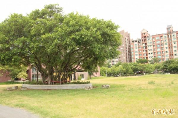 新竹縣的國際環境教育園區萬坪綠地將在台灣原生植物保育協會支持下,成為台灣原生植物的保種基地。(記者黃美珠攝)