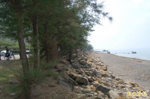 枋山鄉海岸線景致怡人,但多為保安林,須解編才能開發。(記者李立法攝)