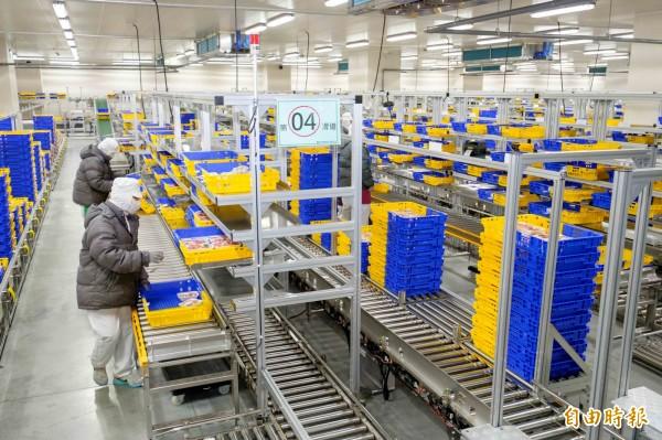五股善美的生鮮處理中心並導入規模最大的生鮮商品自動分貨系統,每小時可處理6000籃門市訂購的商品,一批次供應286家門市訂貨需求。(記者楊雅民攝)