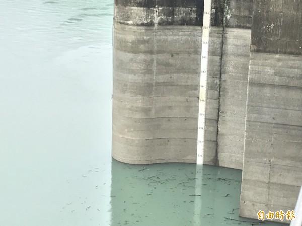 石門水庫水情恢復正常。(記者李容萍攝)