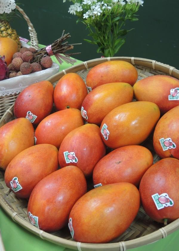 台北花博農民市集舉辦「蜂芒-夏日清涼野餐趴」,品嘗購買到汁多味美的愛文芒果。(台北市產業發展局提供)