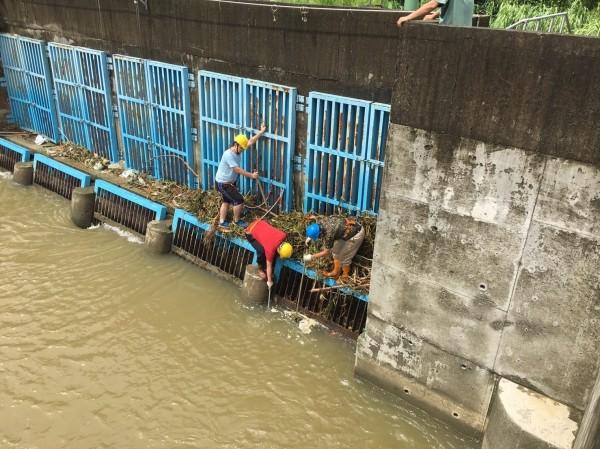 台水公司派員在食水嵙溪取水口,快速清除樹枝雜草及垃圾,確保食水嵙溪原水量。(台水公司提供)