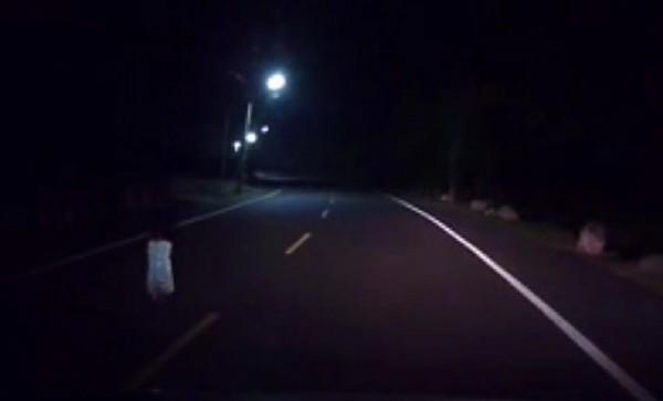 離家女童獨自走在漆黑的道路上,哭喊著要找媽媽。(記者陳賢義翻攝)