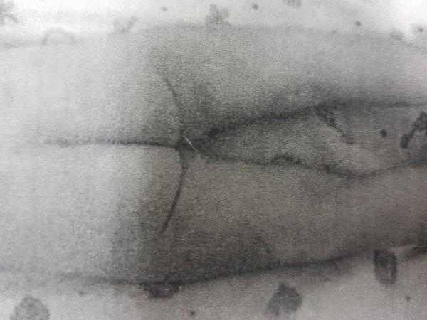 男童被打得遍體鱗傷。(記者蔡彰盛翻攝)