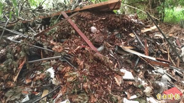 斗南一處竹林地遭傾倒大量廢棄物。(記者廖淑玲攝)