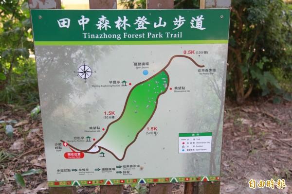 有山友表示,在登山步道瞭望點發現水鹿行蹤。(記者陳冠備攝)