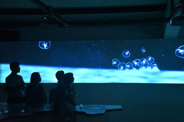 馬祖藍眼淚生態館透過科技創造虛擬實境的環境,讓遊客彷彿身臨現場,感受藍眼淚的美麗。(連江縣政府提供)