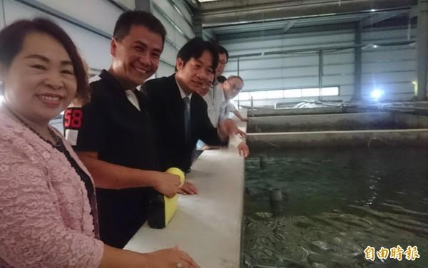 連俊堯(左2)採「魚電共生」的室內循環水養殖筍殼魚技術,賴清德(左3)稱讚很厲害。(記者楊金城攝)
