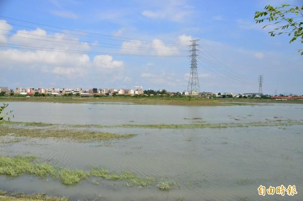 這次的豪雨期間,仁德滯洪池也被灌飽。(記者吳俊鋒攝)