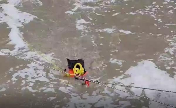 嘉義縣消防局人員在急流中將狗救援到安全處所。(記者林宜樟翻攝)