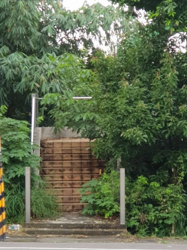 該天橋久未維護,入口處長滿雜草藤蔓,今早頭份市公所清潔隊到場清除。(記者鄭名翔翻攝)