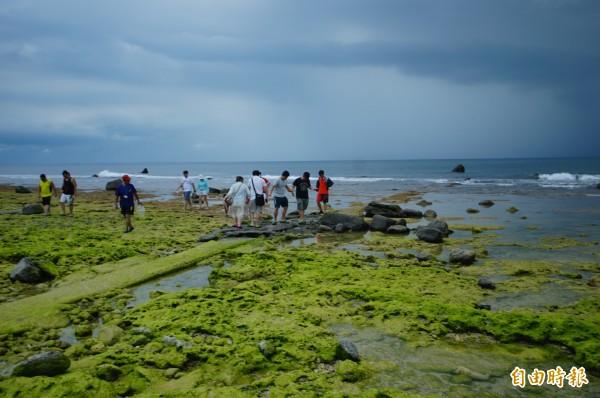7月時就已陰雨不斷,小琉球人氣仍強強滾,圖為參訪潮間帶的遊客。(記者陳彥廷攝)