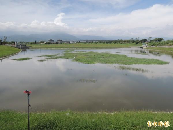 抽水站前方的滯洪池。(記者江志雄攝)