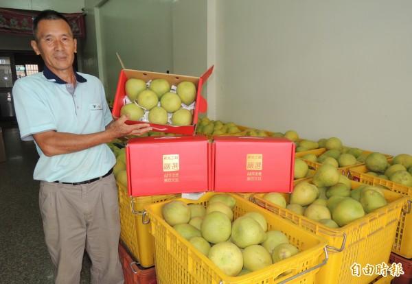 麻豆柚農王佑鑫的百年文旦賣到百貨公司去。(記者楊金城攝)