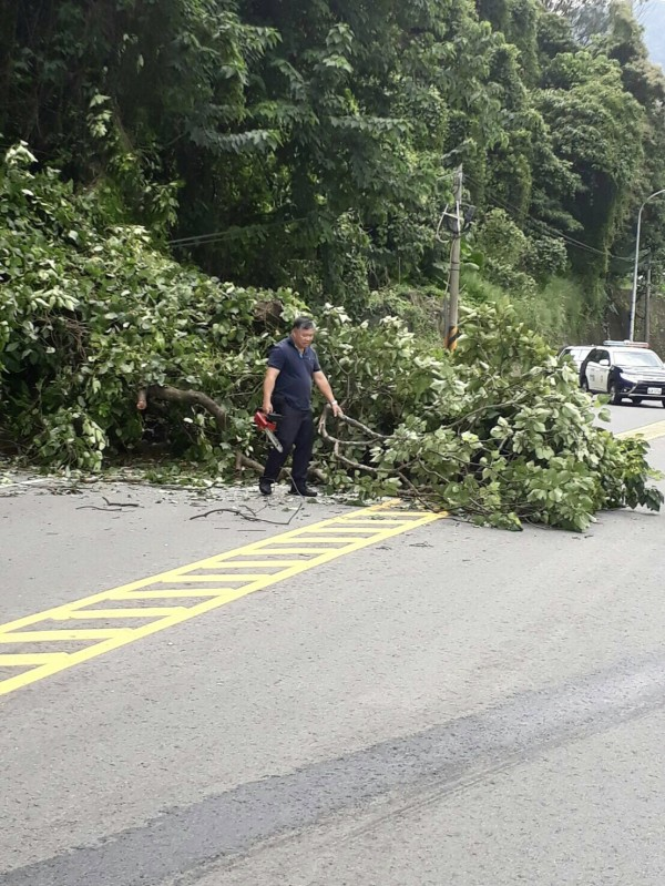 石門所所長羅文綉在搶修人員到場前,先把鋸斷的樹幹從路面移開。(記者李容萍翻攝)