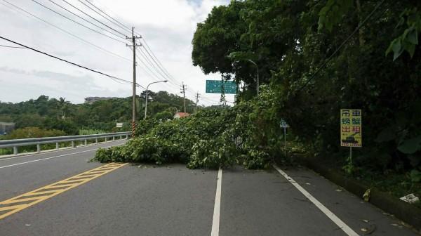 警方在搶修人員到場前,先把鋸斷的樹幹從路面移開。(記者李容萍翻攝)