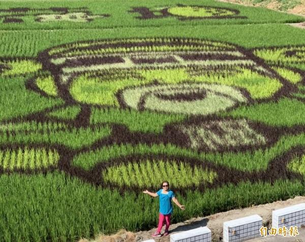 花壇鄉三春老樹還有壯觀的彩繪稻田,遊客在巨幅的土地公圖案前顯得渺小。(記者湯世名攝)