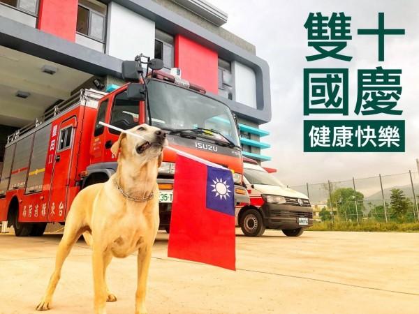 在台東縣消防局人員的創意巧思下,搜救犬「健康」也搭配雙十國慶日,祝大家「健康」快樂。(台東縣消防局提供)