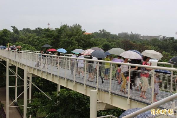 開幕初期,連陰天下雨也不減遊客朝聖熱潮。(資料照)