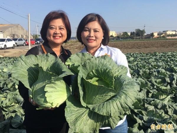 云林县长当选人张丽善感谢新北果菜公司总经理江惠贞(左)帮忙卖菜。(记者廖淑玲摄)