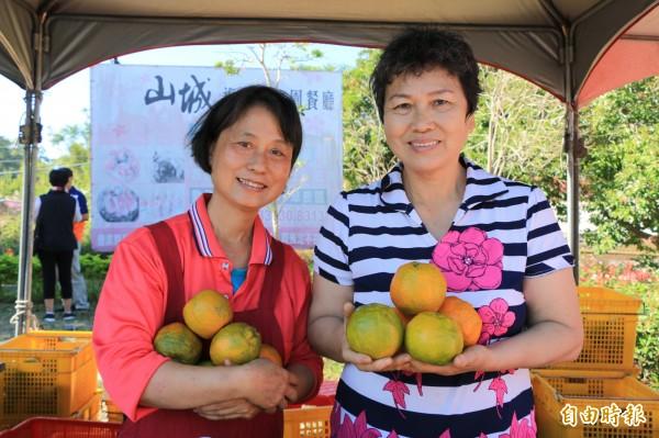 柑橘正當季,三灣四季農場以自然農法栽種各式柑橘,歡迎遊客來嘗鮮。(記者鄭名翔攝)