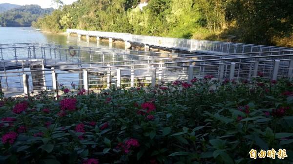 步道兩側種滿引蝶開花植物,打造薑母島的登島意象。(記者李容萍攝)