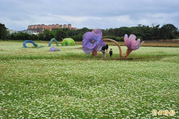 龍潭場由藝術家蕭凱文創作的「曠野瑪娜─種子及花朵」作品。(記者李容萍攝)