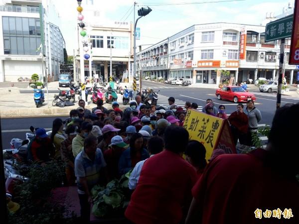 東港房仲業者買了500顆高麗菜,分送給民眾,現場大排長龍。(記者陳彥廷攝)