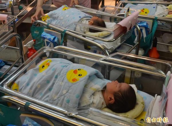 屏東縣上個月出生率全國最低。(記者侯承旭攝)