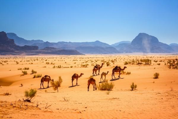 約旦瓦地倫」是賣座電影絕地救援的取景地,而旅客除了可以在此感受沙漠的壯麗外,還能欣賞史前遠古巨石的景觀。(Booking.com提供)