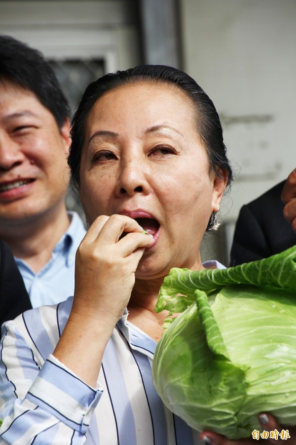 嘉義縣長張花冠生吃高麗菜幫忙促銷。(記者林宜樟攝)