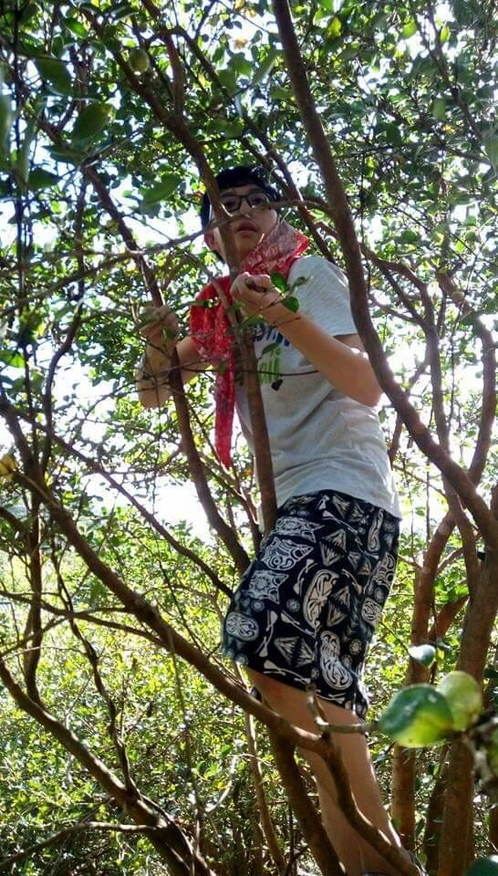 新北市家扶中心今年推薦七位自強兒童,就讀建國中學一年級的蔡承勳來自單親家庭,閒暇時到外婆家幫忙挖竹筍及爬樹採苦茶籽。(新北市家扶中心提供)